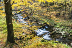 View of autumn waterfalls Royalty Free Stock Photography