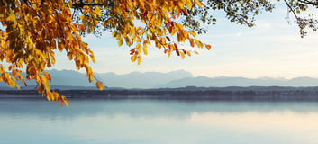View through autumnal leaves - starnberg lake and zugspitze Royalty Free Stock Images