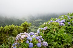 View of Azorean nature from Lomba do Vasco viewpoint in Sao Miguel island, Azores, Portugal
