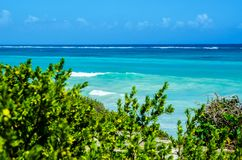View of the azure blue sea and waves through green bushes Royalty Free Stock Photography
