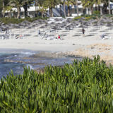 A view of a azzure water and Nissi beach in Aiya Napa, Cyprus.  stock images