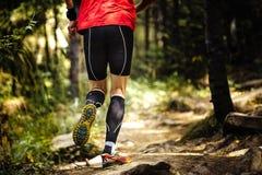 View back marathon runner running in woods Royalty Free Stock Photo