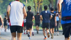 View of back of people run and walk at pedestrian garden park. The view of back of people run and walk at pedestrian garden park Stock Image