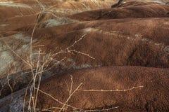 View of the badlands, Ontario, Canada Royalty Free Stock Photos