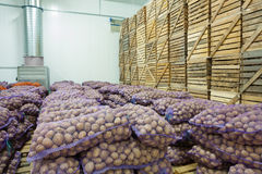 View on bags and crates of potato in storage house Stock Photo