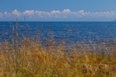 View of Baikal lake. Lake Baikal with yellow grass and clouds on the background Stock Photo