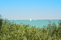 A view of Balaton lake with white yachts at the horizon and wate Stock Photography