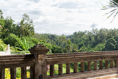 View from balcony to tropical woods at hotel Royalty Free Stock Photography