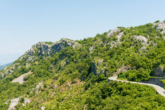View the Balkan Mountains in the summer in Montenegro former Yugoslavia covered  green trees Stock Photos
