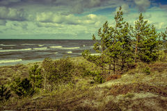 View of Baltic sea Royalty Free Stock Photography