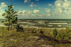View of Baltic sea. With instagram filter Stock Images