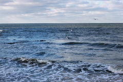 View of the Baltic Sea in the winter during a strong wind. Stock Images