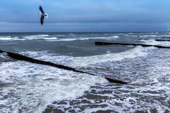 View of the Baltic Sea in the winter. Royalty Free Stock Photos