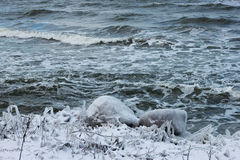 View of the Baltic Sea in the winter. Stock Photo