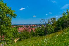 View of Bamberg, Germany. Image of flowers and trees on the Michelsberg in Bamberg, Germany Royalty Free Stock Image