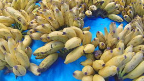 View of bananas on the table at the Sri Lankan market. Tropical fruit is available all year. stock video footage
