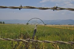 Looking through the barb wire of the sprinklers on the field stock photography