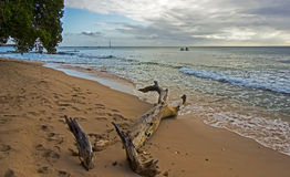 View of Barbados North West Coast Stock Photography