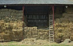 View on barn full of dry straw royalty free stock photography