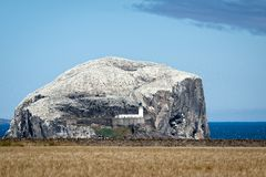 View of Bass Rock in the Firth of Forth Royalty Free Stock Images