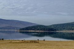 View of Batak dam reservoir, coastal autumn glade, forest with reflection and hills at Rhodope mountains royalty free stock images
