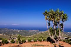 View of the bay, in the foreground  yucca, Rhodes, Stock Photography