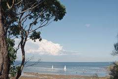 Bay in summer with boats Royalty Free Stock Images