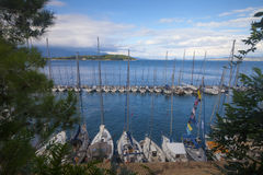 View on the bay with yachts. View on the beautiful sea bay with yachts through pine tree branches stock photography
