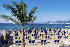 View of the beach at Cannes with chairs and parasols on white sandy beach. Blue chairs and yellow parasols  at cannes alpes maritime provence south of france Stock Photos