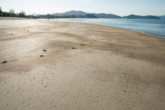View beach low tide water Stock Photography