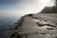 A view of a beach on a misty day in Autumn, Latvia. Jurmala stock photo