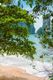 View of the beach and mountains through the foliage Royalty Free Stock Photos