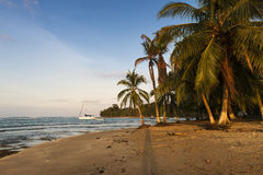 View of a beach with palm trees and boats in Puerto Viejo de Talamanca, Costa Rica. Central America Stock Image