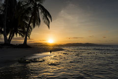 View of a beach with palm trees at sunset in Puerto Viejo de Talamanca, Costa Rica. Central America; Concept for travel in Costa Rica Royalty Free Stock Images
