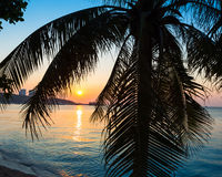 A view of a beach with palm trees. At sunset. Thailand Royalty Free Stock Photos