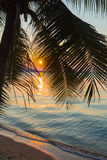 A view of a beach with palm trees. At sunset. Thailand Royalty Free Stock Images