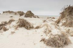 Dunes on Romo Island - Denmark. Stock Photo