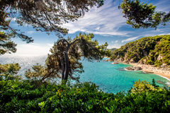 View of the beach of Sa Boadella. By Clotilde Gardens Stock Photography