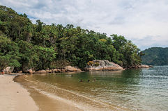View of beach, sea and forest on cloudy day in Paraty Mirim. royalty free stock image