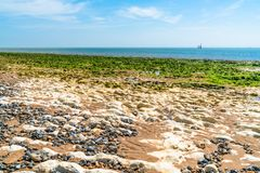 Sea and beach view in Ramsgate, Kent UK. View of beach and sea at low tide with stones covered in seaweed in Ramsgate, Kent, UK Stock Photo