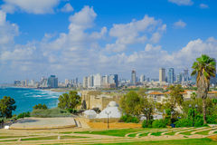 View of the beach and skyline of Tel-Aviv Royalty Free Stock Photo