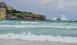 View of the beach in Sydney Royalty Free Stock Images