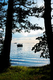 View of the beach through the trees Stock Photography