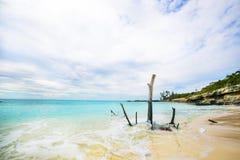 The view of a beach  on uninhabited island Half Moon Cay (The Ba Royalty Free Stock Photos