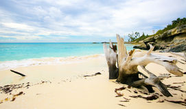 The view of a beach  on uninhabited island Half Moon Cay (The Ba Stock Photos