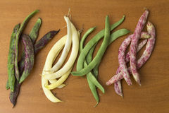 View of bean pods of different types and colors Royalty Free Stock Images