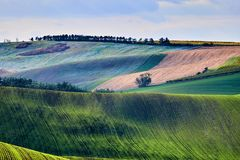 View of beautiful agicultural fields and autumn trees.South Moravia, Czech Republic.  royalty free stock photos
