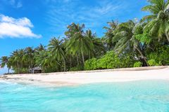 View of beautiful beach with tropical palms. At resort Royalty Free Stock Photo
