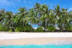 View of beautiful beach with tropical palms. At resort Stock Photos