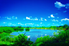 View on beautiful blue lake with green edges and Stock Images